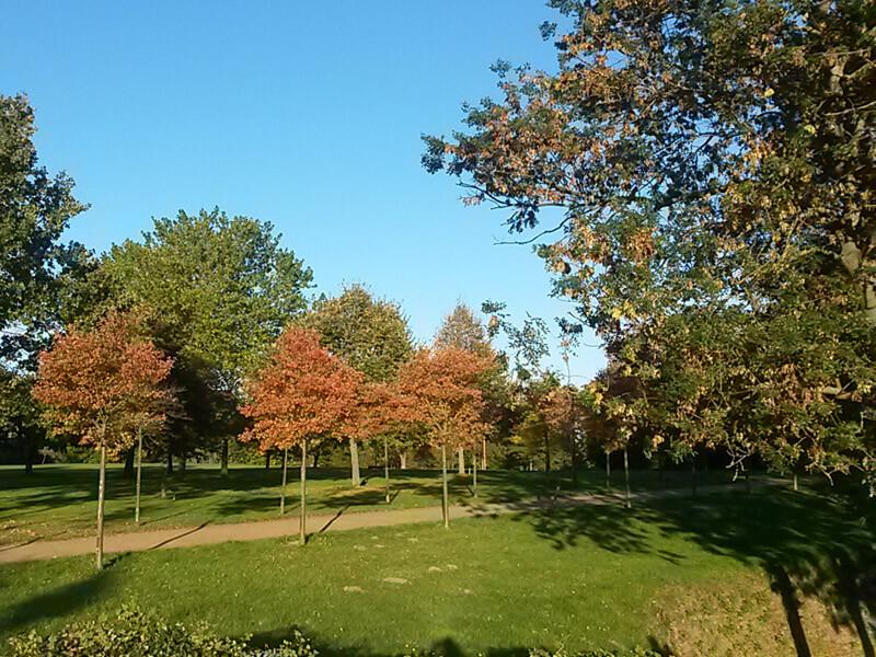 Fürstengarten in Lauenburg