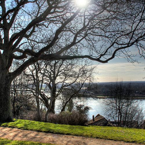Blick vom Schlossgarten auf die Elbe