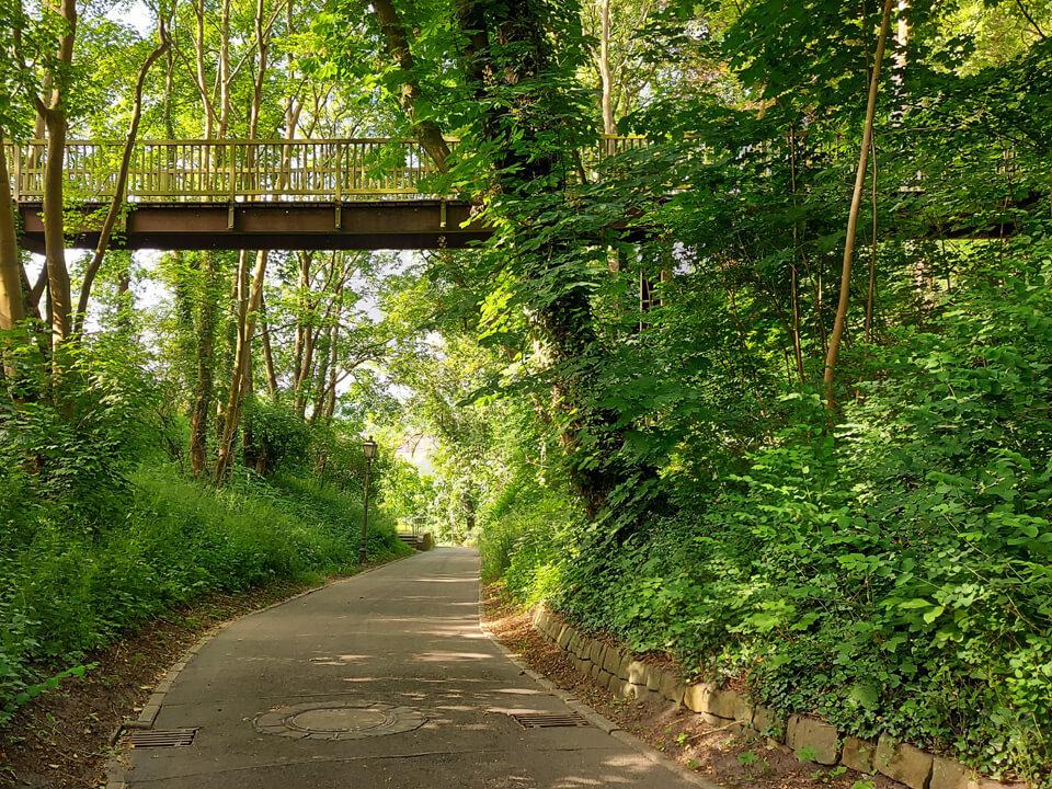 Der Weg zur Fährtreppe