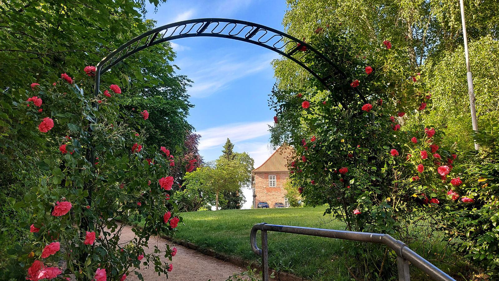Rosen am Eingang zum Schlossplatz